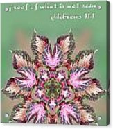 Varigated Foliage Star Heb. 11v1 Acrylic Print