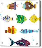Various Fishes Acrylic Print