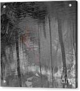 Veiled Bride Acrylic Print