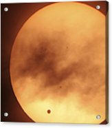 Venus Transiting In Front Of The Sun Acrylic Print