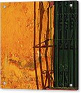 Verde Jaula Acrylic Print by Skip Hunt