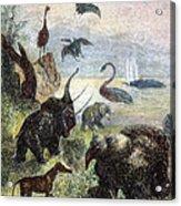Verne: Journey Acrylic Print