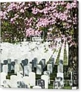Veterans National Cemetery Acrylic Print