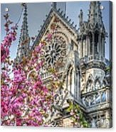 Vibrant Cathedral Acrylic Print