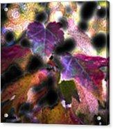 Vibrant Fall Acrylic Print