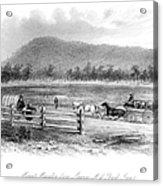 Victoria, Australia, 1856 Acrylic Print