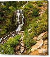 Vidae Falls Landscape Acrylic Print