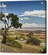 View From A Mesa Acrylic Print