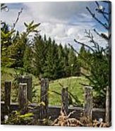 View From Picket Fence Acrylic Print