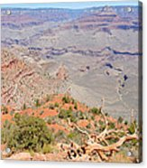 View From The South Kaibab Trail II Acrylic Print