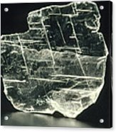 View Of A Sample Of Selenite, A Form Of Gypsum Acrylic Print by Kaj R. Svensson