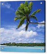 View Of Deserted Beach From Tapuae Tai Acrylic Print