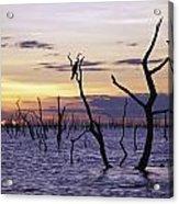 View Of Lake Kariba At Sunset Acrylic Print