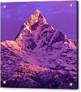 View Of Machhapuchhare At Sunrise From Acrylic Print
