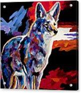 Vigilant Acrylic Print by Bob Coonts