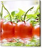 Vine Tomatoes And Salad With Water Acrylic Print
