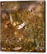 Vintage Beauty In Nature  Acrylic Print