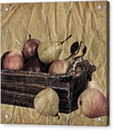 Vintage Pears Acrylic Print by Jane Rix