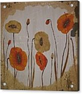 Vintage Red Poppies Painting Acrylic Print