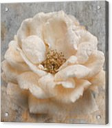 Vintage Rose I Square Acrylic Print