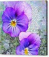Viola On Glass Acrylic Print