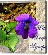 Violet Greeting Card  Sympathy Acrylic Print