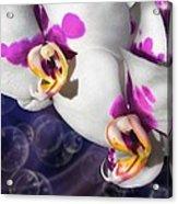 Violet Spots Acrylic Print by Diana Shively