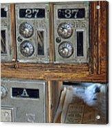 Virginia City Post Office Box Acrylic Print