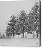 Virginia Snow Acrylic Print