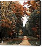 Virginia Water Acrylic Print