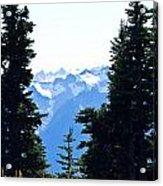 Vistas Along The Trail Acrylic Print