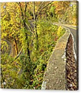 W Road In Autumn Acrylic Print