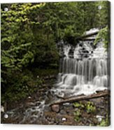Wagner Falls Forest Acrylic Print