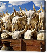 Wagon Full Of Animal Skulls Acrylic Print by Garry Gay