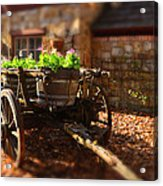 Wagon Of Flowers Acrylic Print by Andrew Dickman