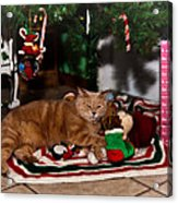Waiting For Santa Acrylic Print