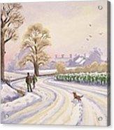 Walk In The Snow Acrylic Print by Lavinia Hamer