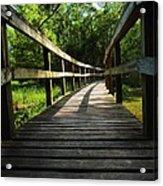 Walk This Way To Nature Acrylic Print