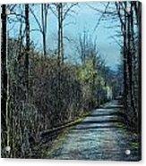 Walking In The Shadows Acrylic Print