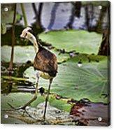 Walking On Water V3 Acrylic Print
