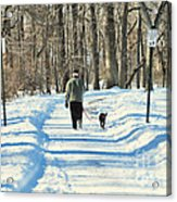 Walking The Dog Acrylic Print by Paul Ward