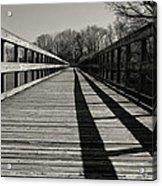 Walking The Lines Acrylic Print