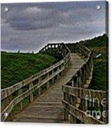 Walkway On Phillip Island Acrylic Print