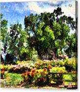 War Memorial Rose Garden  4 Acrylic Print