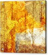 Warm Abstract Acrylic Print