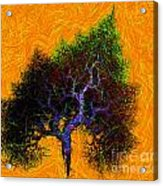 Was A Crooked Tree  Grunge Art Acrylic Print