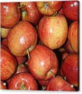 Washington Apples Acrylic Print