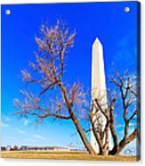 Washington Monument In Washington Dc Acrylic Print