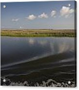 Water And Marsh In Plaquemines Parish Acrylic Print by Tyrone Turner