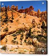 Water Canyon Dragon Acrylic Print